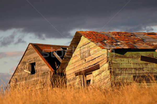 Stock photo: Deliapidated  farm granaries in scenic Saskatchewan