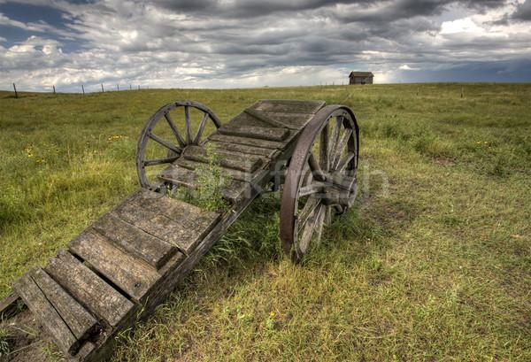 Starych preria koła koszyka saskatchewan Kanada Zdjęcia stock © pictureguy