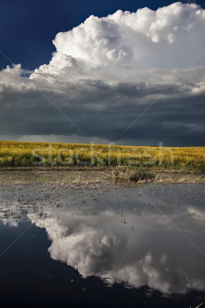Pradera nubes de tormenta siniestro tiempo saskatchewan Canadá Foto stock © pictureguy