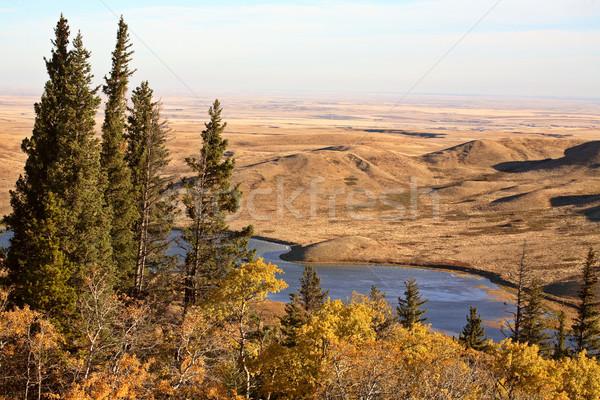 Reesor Lake Alberta in fall Stock photo © pictureguy