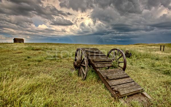 Stock fotó: öreg · préri · kerék · kosár · Saskatchewan · Kanada