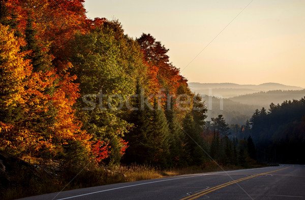 Autumn Colors and road  Stock photo © pictureguy