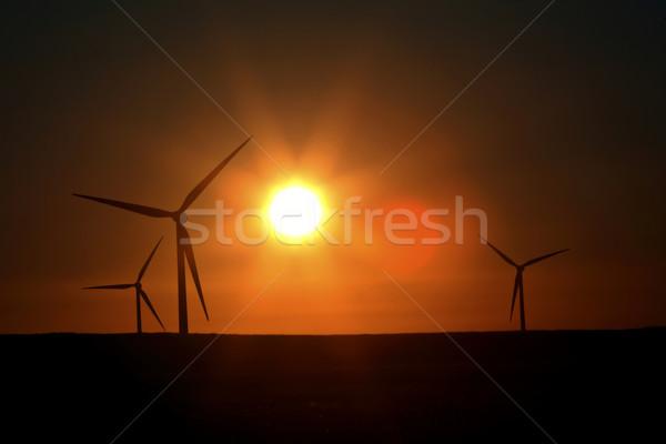 Sun glare upon Alberta windfarm Stock photo © pictureguy