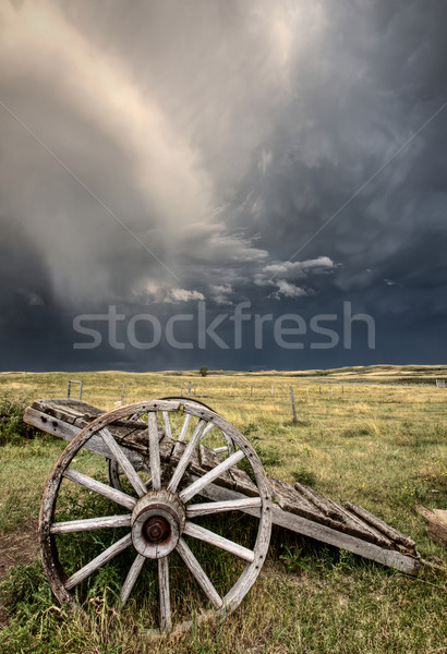 Vieux prairie roue panier saskatchewan Canada Photo stock © pictureguy