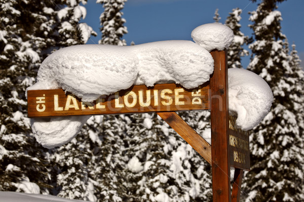 Snow packed on Lake Louise Drive sign Stock photo © pictureguy