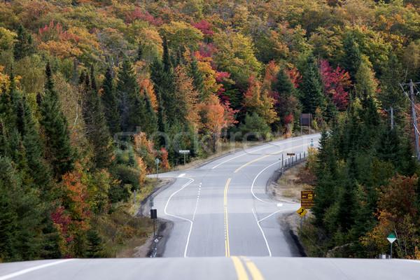 парка Онтарио дороги осень осень цветами Сток-фото © pictureguy
