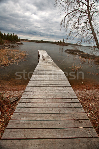 Dock on Reed Lake in Northern Manitoba Stock photo © pictureguy