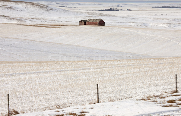 Stock fotó: épületek · mező · tél · kerítés · égbolt · tájkép