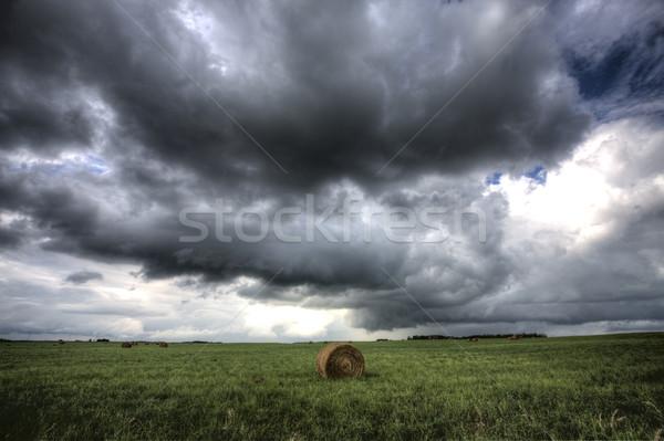 Onweerswolken saskatchewan hooi hemel natuur landschap Stockfoto © pictureguy