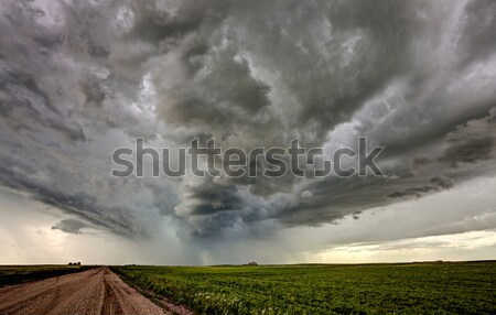 Stock fotó: Préri · út · viharfelhők · Saskatchewan · Kanada · mező