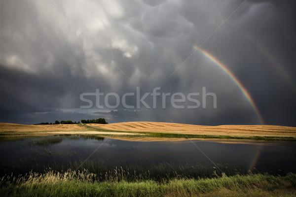 Saskatchewan tempesta Rainbow stagno blu Foto d'archivio © pictureguy