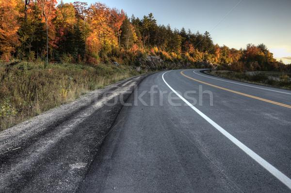 осень цветами дороги парка Онтарио Канада Сток-фото © pictureguy