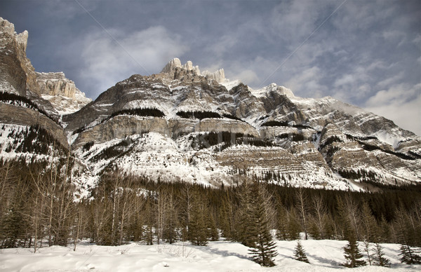 Rocky Mountains in Winter Canada Stock photo © pictureguy