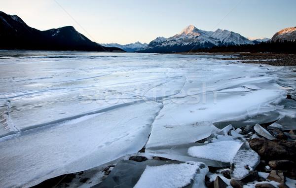 Göl kış buz kabarcıklar dizayn doğa Stok fotoğraf © pictureguy