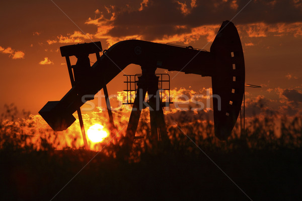 Oil rig pump jack silhouetted by setting sun Stock photo © pictureguy