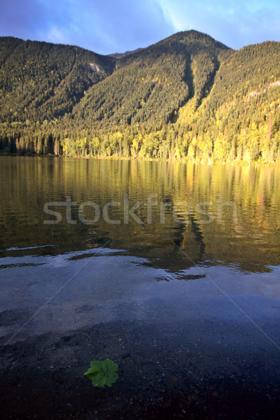 Hart Lake in awesome Alberta Stock photo © pictureguy