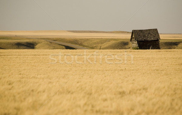Rural saskatchewan verano Canadá cielo Foto stock © pictureguy
