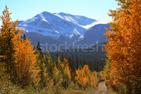 Rocky Mountains in autumn Stock photo © pictureguy