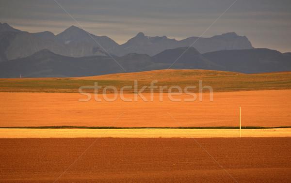 高い 平野 山 距離 旅行 色 ストックフォト © pictureguy