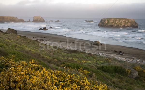 Naplemente Oregon gyönyörű kő víz Stock fotó © pictureguy