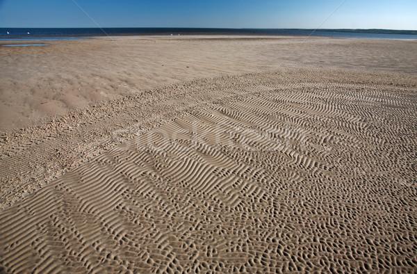 Sand flats along shore of Lake Winnipeg Stock photo © pictureguy