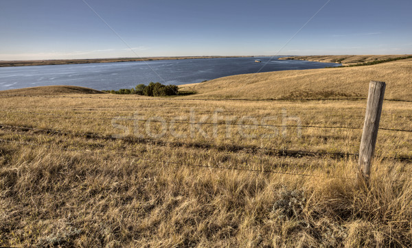 Meer saskatchewan Canada prairie gras Stockfoto © pictureguy