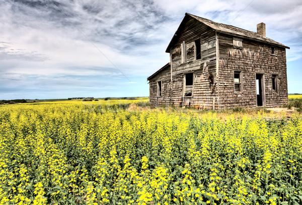 Сток-фото: старые · заброшенный · здании · Саскачеван · Канада · сельский