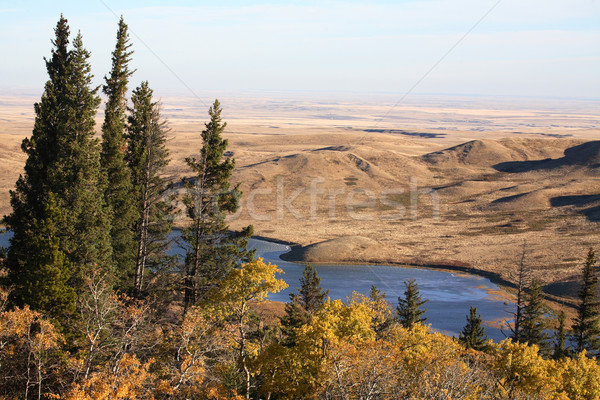 Reesor Lake Alberta in fall Stock photo © pictureguy