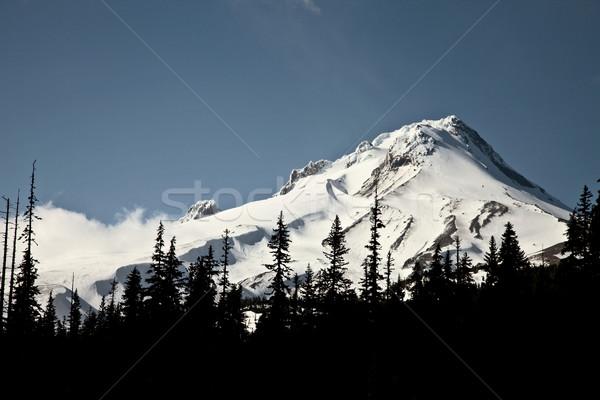 Oregon sneeuw cap schilderachtig berg natuur Stockfoto © pictureguy