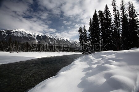 Open water in winter Stock photo © pictureguy