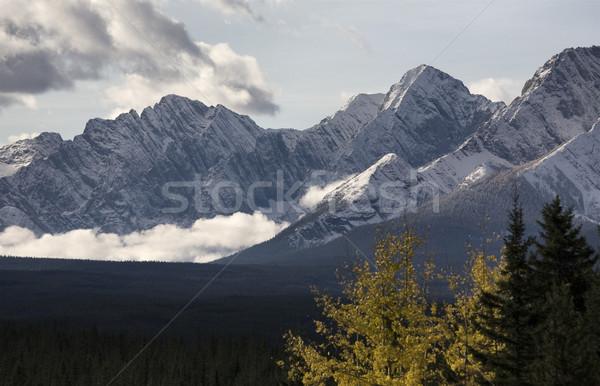 Autumn in the Rockies Stock photo © pictureguy