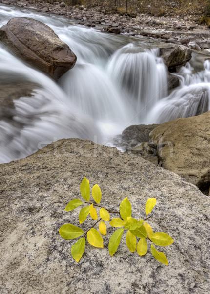 Sunwapta Waterfall Alberta Canada Stock photo © pictureguy