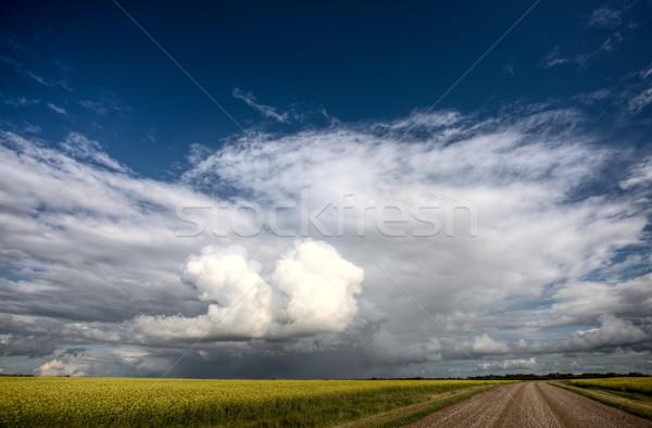 Pradaria estrada escolas casa saskatchewan Canadá Foto stock © pictureguy