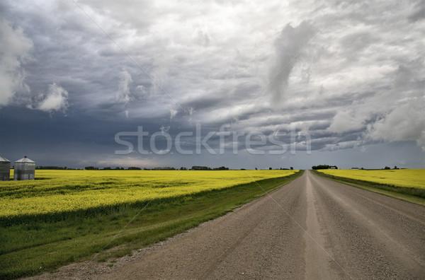 Saskatchewan pradaria cena Canadá fazenda Foto stock © pictureguy