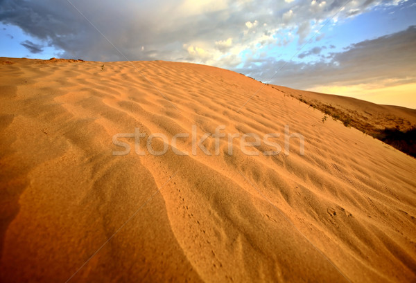 Sand dune at Great Sand Hills in scenic Saskatchewan Stock photo © pictureguy