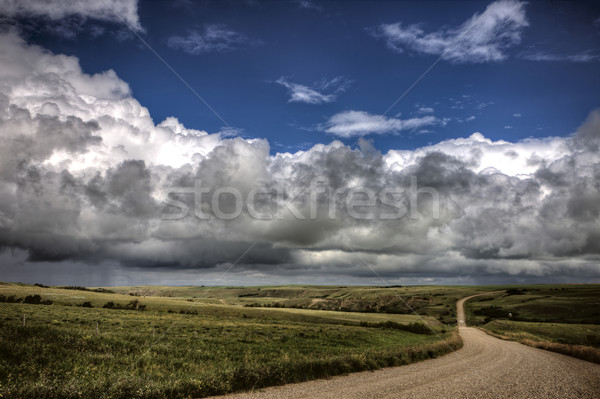Saskatchewan fieno cielo natura panorama Foto d'archivio © pictureguy