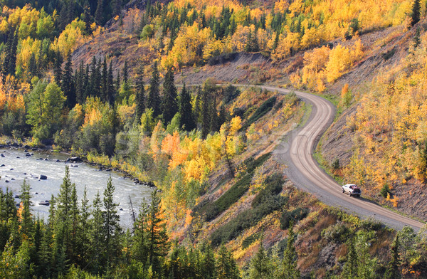 Autumn colored trees along mountain road in British Columbia Stock photo © pictureguy