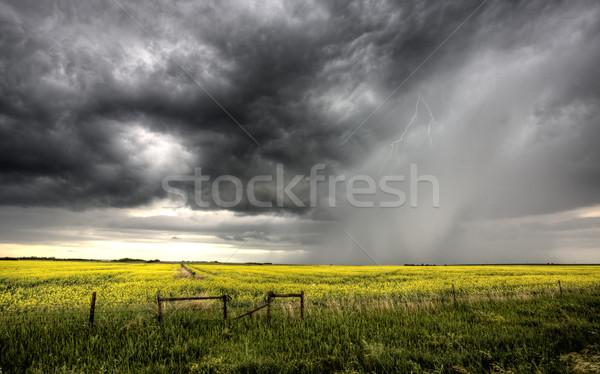 Nubes de tormenta saskatchewan amarillo brillante cielo naturaleza Foto stock © pictureguy