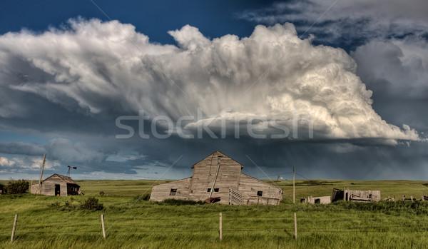 Opuszczony gospodarstwa budynków saskatchewan Kanada burzowe chmury Zdjęcia stock © pictureguy