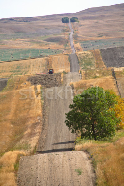 Carretera ejecutando colinas paisaje viaje granja Foto stock © pictureguy