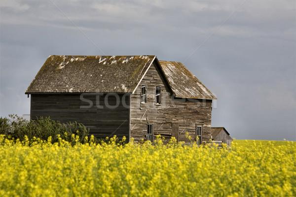 Burzowe chmury saskatchewan dziedzinie żółty kolor niebo Zdjęcia stock © pictureguy