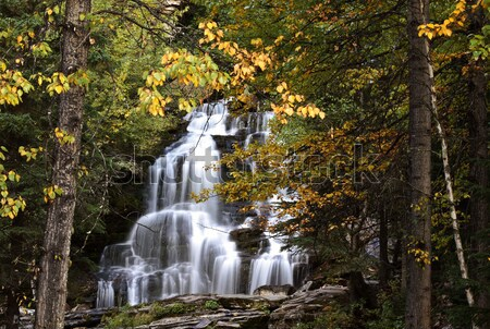Bijoux Falls in beautiful British Columbia Stock photo © pictureguy