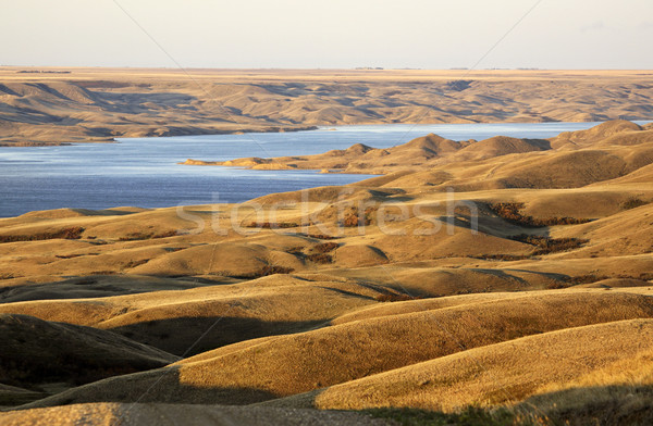 Slopes and hills overlooking Lake Diefenbaker  Stock photo © pictureguy