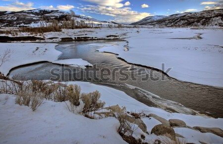 Yellowstone Park Wyoming Winter Snow Stock photo © pictureguy