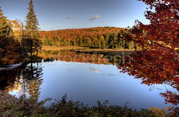 湖 秋 オンタリオ 色 水 日没 ストックフォト © pictureguy
