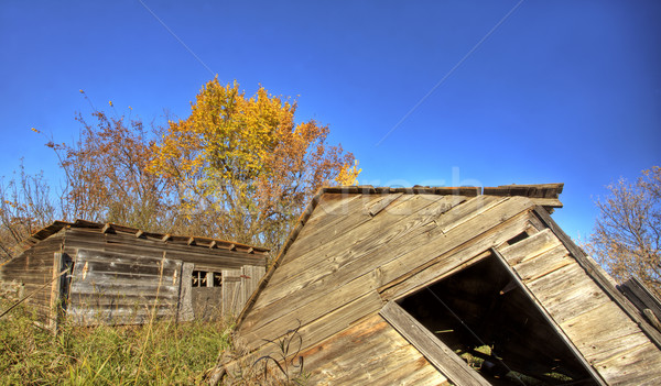 Old Rustic Granary Stock photo © pictureguy