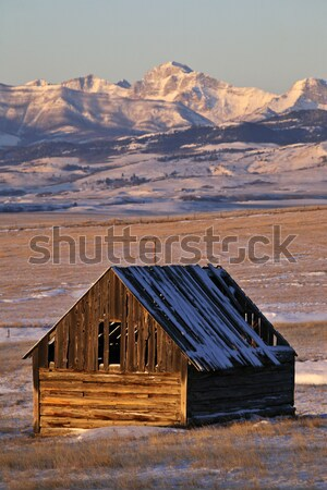 Snow covered Rocky Mountains in Alberta winter Stock photo © pictureguy