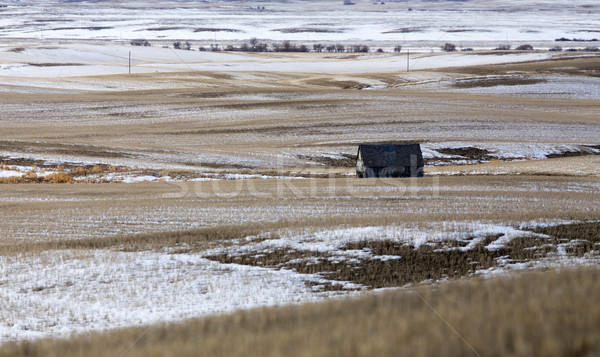 Prairie Landscape in winter Stock photo © pictureguy