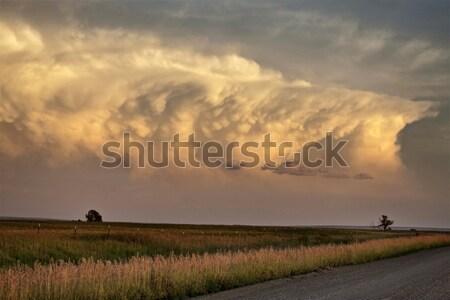 Nuages d'orage saskatchewan courir vers le bas abandonné bâtiment Photo stock © pictureguy
