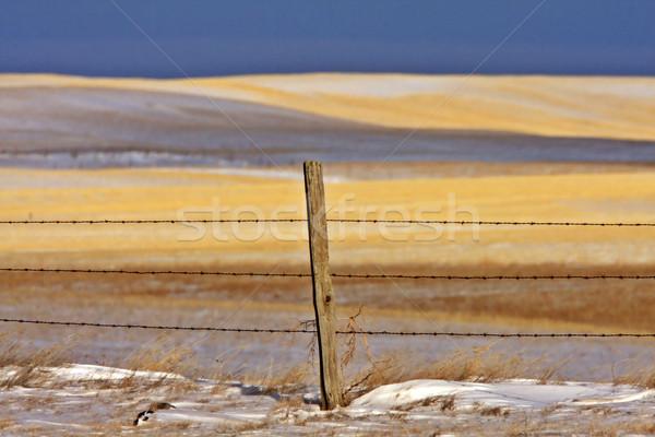 Snow hills Saskatchewan Stock photo © pictureguy
